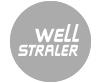 Haarden van het merk Well Straler